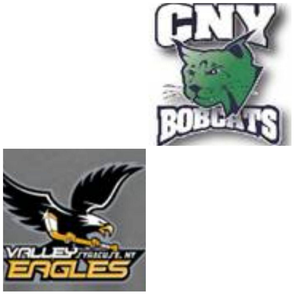 Valley Youth Hockey Association